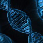親族のハゲが遺伝する確率ってどれくらい?遺伝ハゲにならない3つの条件
